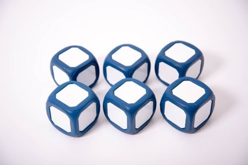 Large Write/Wipe Dice 2pk